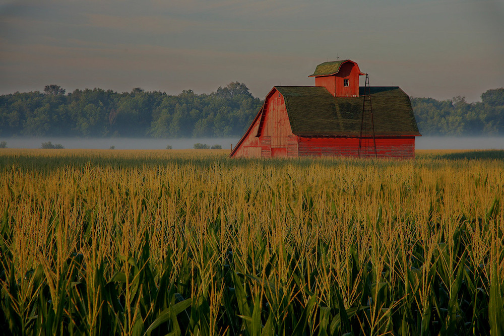farm and crop insurance in Conway, Benton or Greenbrier  STATE | Integrity Insurance Group